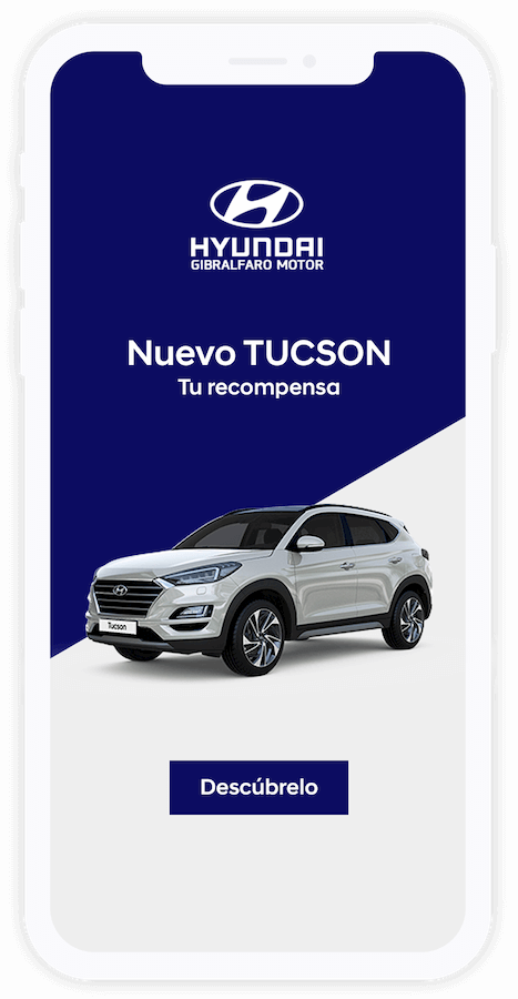 Marketing Online Hyundai Malaga